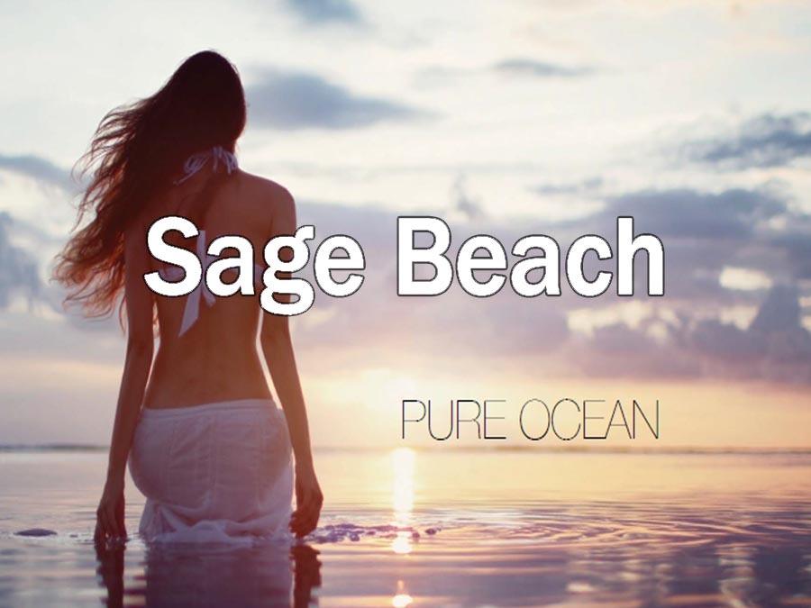 Sage – Hollywood Beach